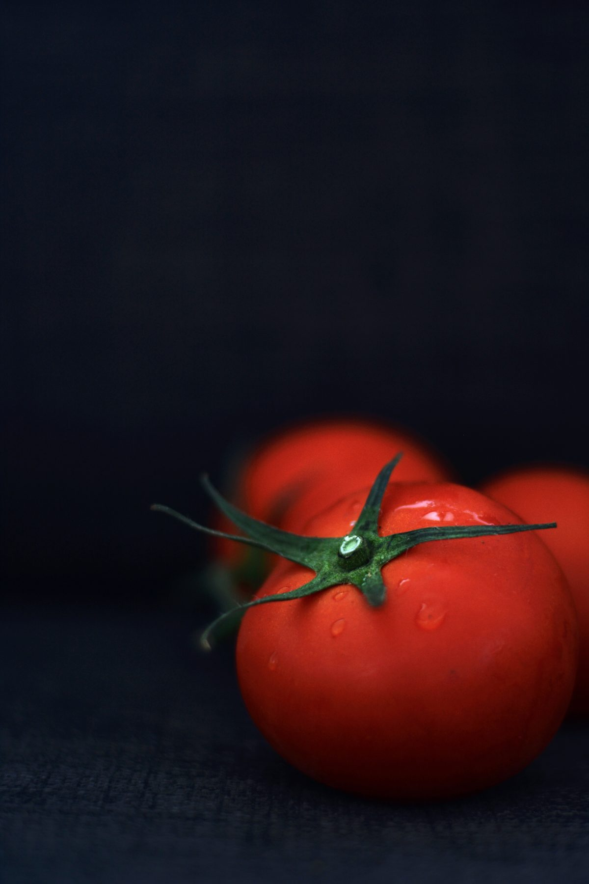 Fresh Tomatoes - food photography - thespiceadventuress.com