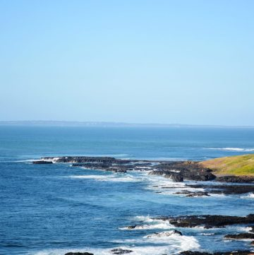 The Nobbies, Philip Island, Victoria - thespiceadventuress.com