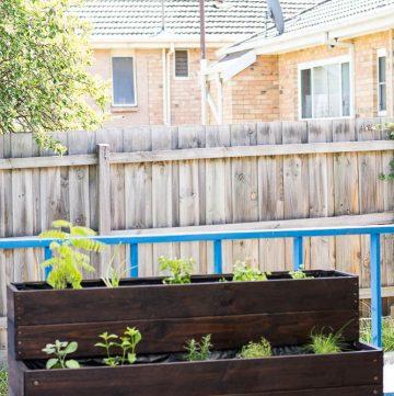 My DIY Wooden Herb Garden (using Ryobi Power Tools) - thespiceadventuress.com