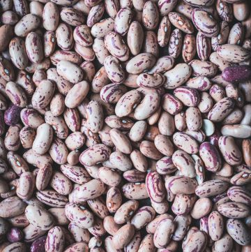 Borlotti beans - thespiceadventuress.com